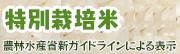 特別栽培米 農林水産省新ガイドラインによる表示